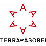 Adegas Terra de Asorei, S.L